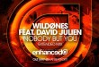 WildOnes ft. David Julien - Nobody But You