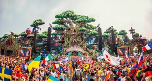 tomorrowland-ids