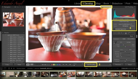 Adobe Lightroom 4 Soft Proofing