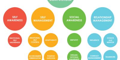 ESI-Competency-Model-2017-copyright-Key-Step-Media