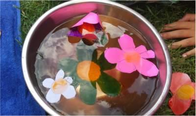 thumbnail flores de papel que se abren en agua