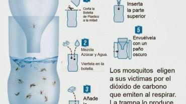 trampa-para-mosquitos