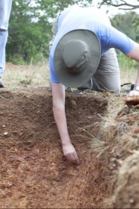 The College of Agriculture at the University of Minnesota Associate Dean digs at the KARUCO site.