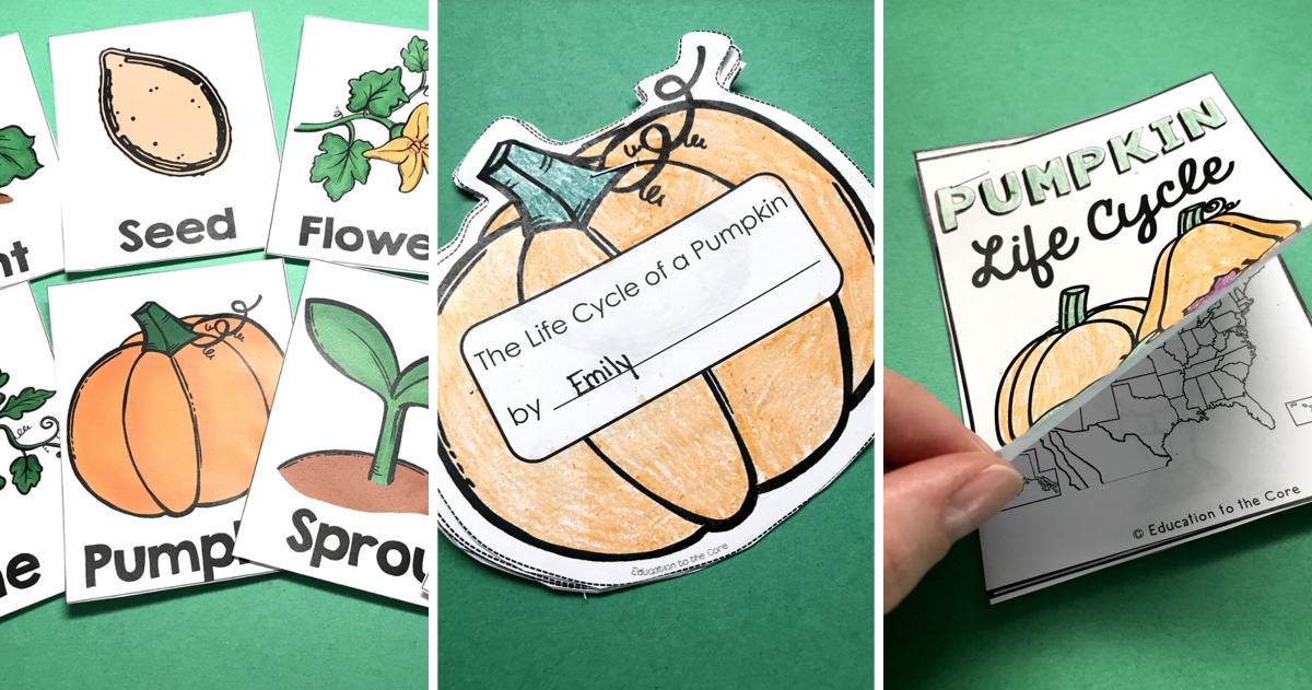 Pumpkin Life Cycle Writing Pack and Freebie - Education to the Core