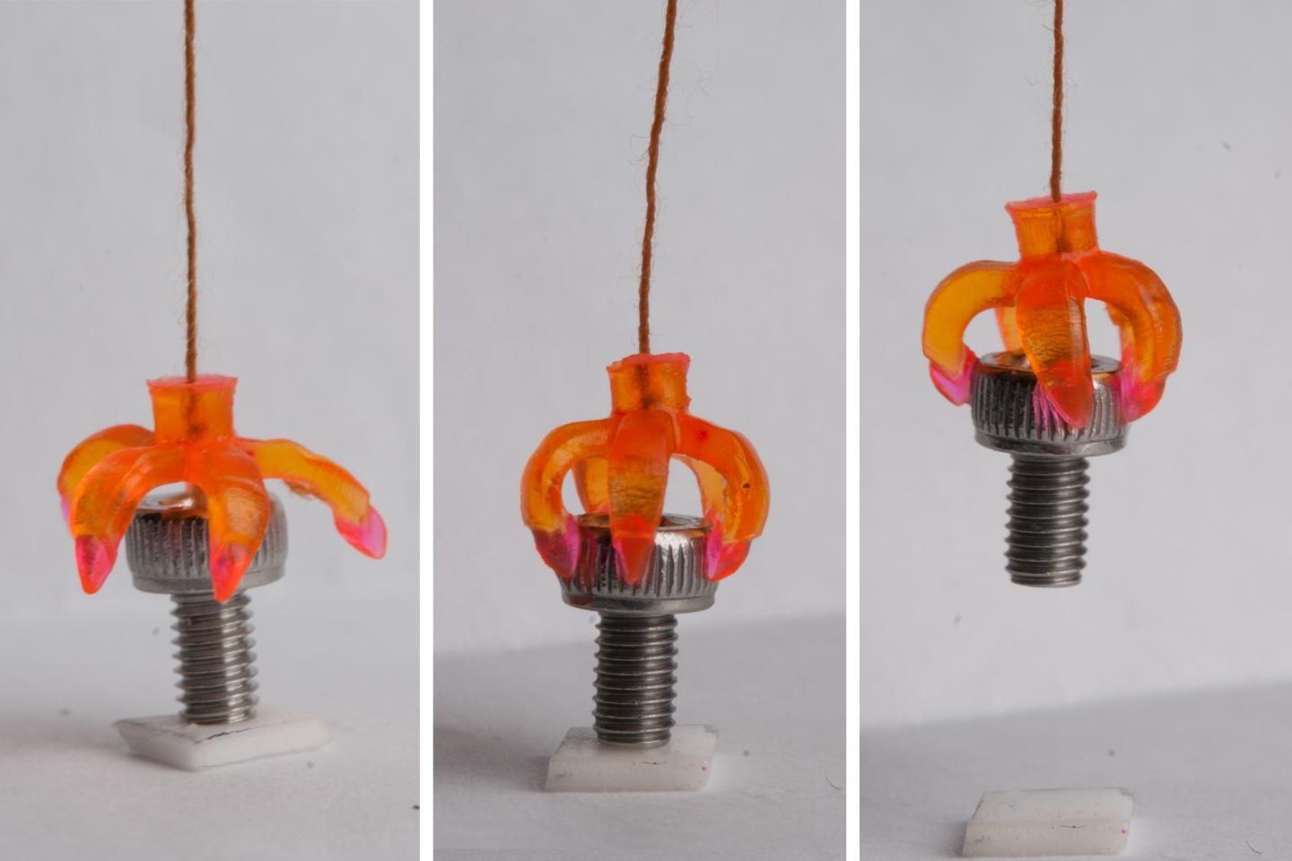 D Print These 3d Printed Objects Immediately Revert To Original Position