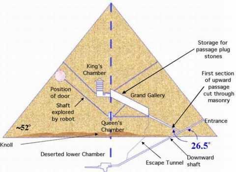 inside a pyramid diagram - Onwebioinnovate