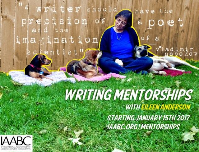 IAABC writing mentorship