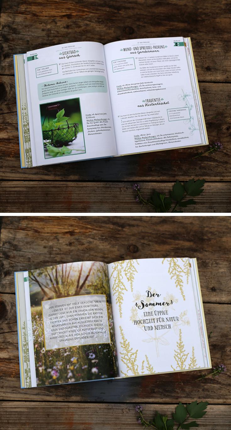 Buchtipp, Draußen, DIY, Naturbücher, Kräuter, Wildpflanzen
