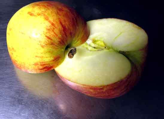 Apfel Cranberry Chutney Marmelade