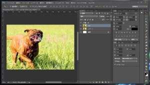 Photoshop-ボカし-コピー