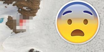 Google Maps: ¿hallan 4 cápsulas extraterrestres en la Antártida?