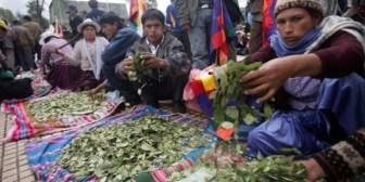 Cocaleros de La Paz anuncian bloqueo a Yungas desde el miércoles tras fracaso del diálogo