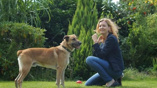 La vida en Alemania de rubio, el perro adoptado por la azafata Olivia Sievers (Facebook).