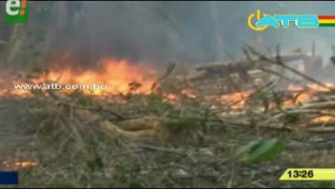 Autoridades benianas denuncian exceso en quema de pastizales