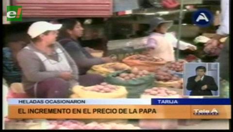 Se incrementa el precio de la papa en los mercados tarijeños