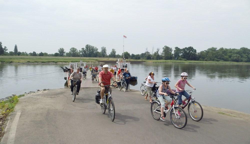 RadfahrerElbfähre Steutz_xs