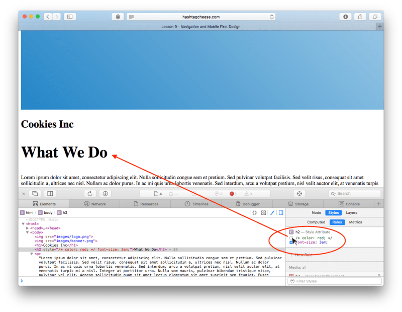 Safari Inspect Element showing CSS checkboxes with red unchecked