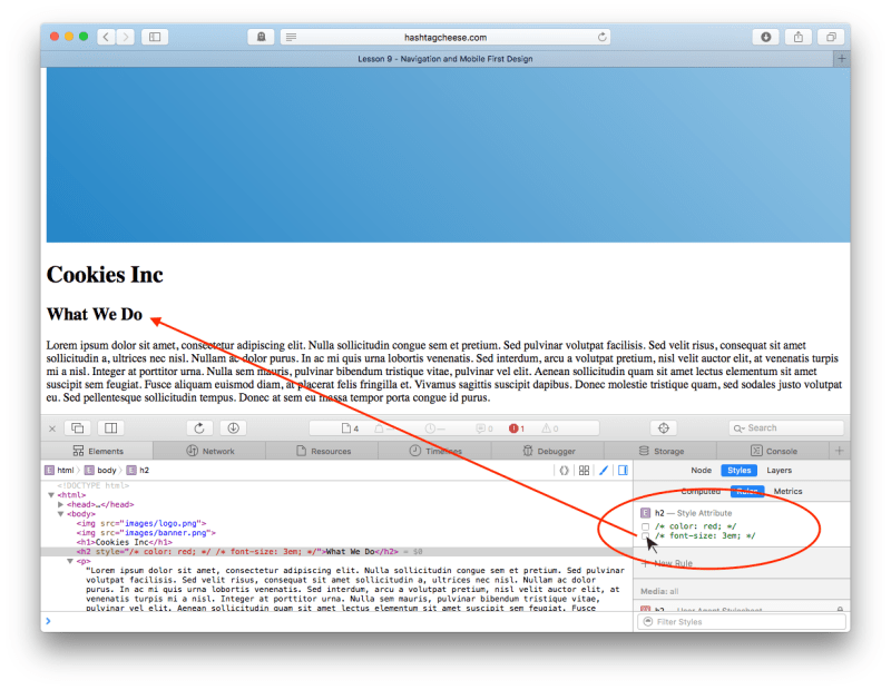 Safari Inspect Element showing CSS checkboxes with both red and font size unchecked
