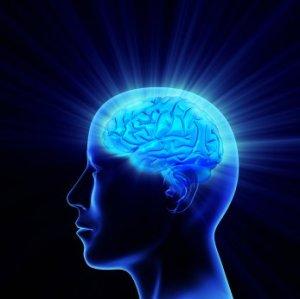 brainpower1