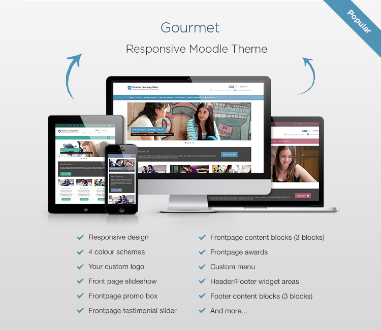 Professional Responsive Moodle Theme - Gourmet - Responsive Media