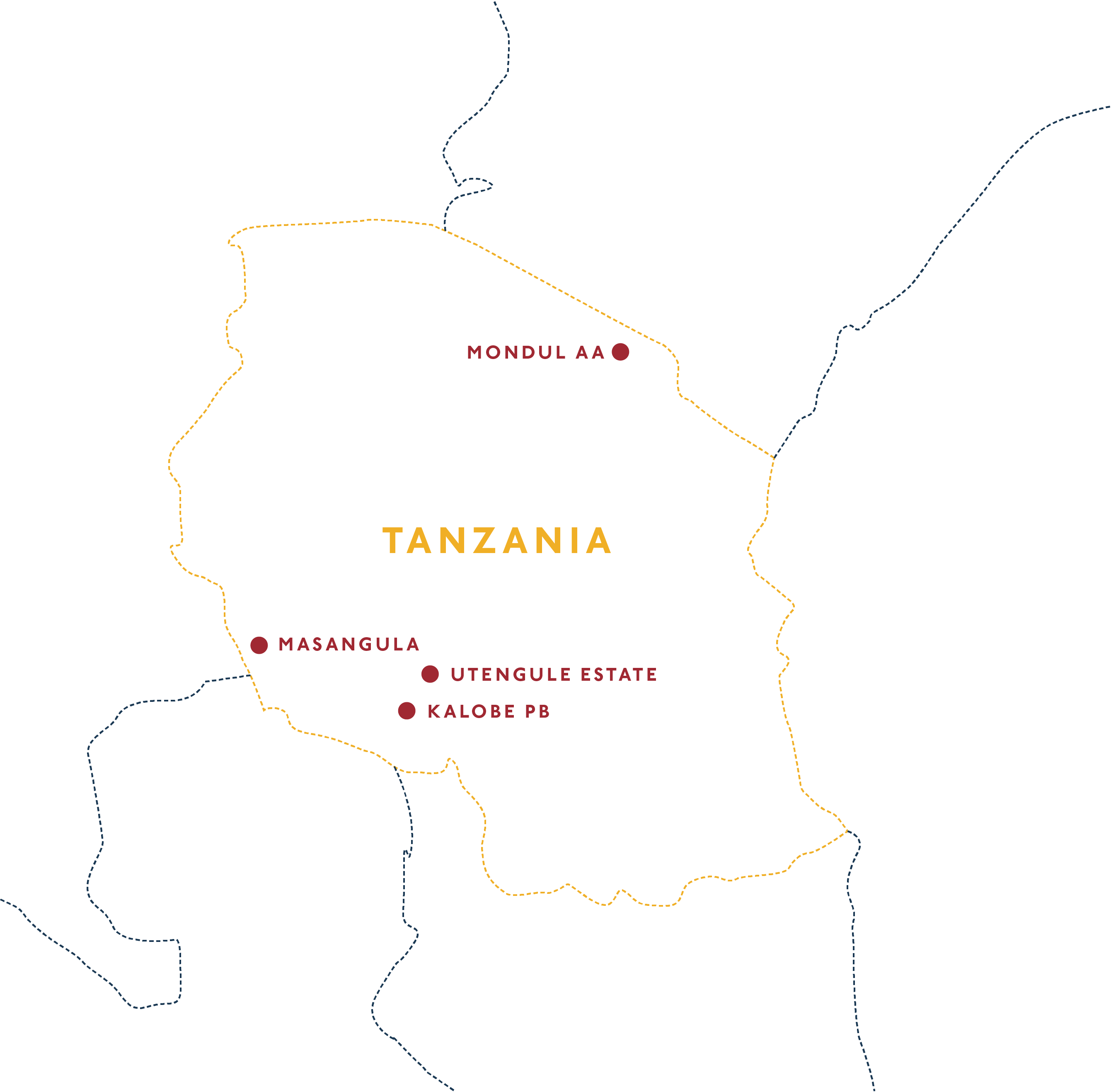 Wholesale Suppliers In Tanzania Tanzania Shop Electric Coffee Co