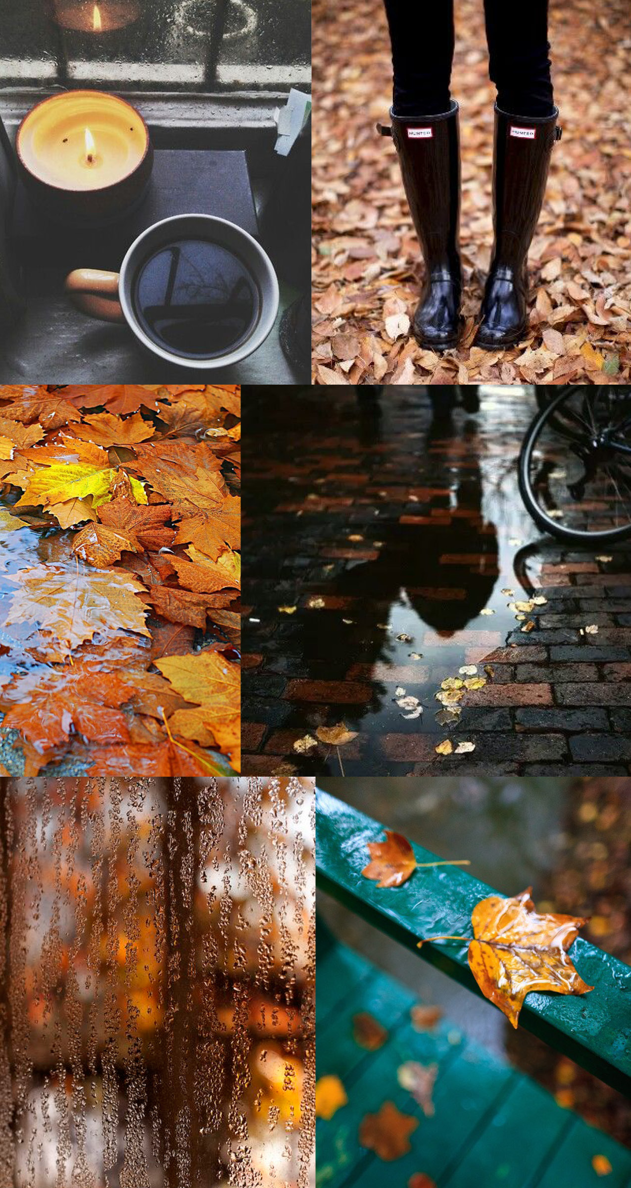 The Yellow Wallpaper Quotes And Analysis Moodboard Rainy Fall Morning Elements