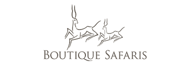 Bespoke Safaris, logo, Bespoke Safaris logo, BS logo, Elephant Watch Portfolio