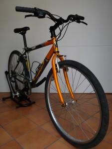 0650 Bianchi Rider Rs 02