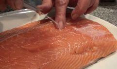 Salmon marinado con salsa de mostaza10