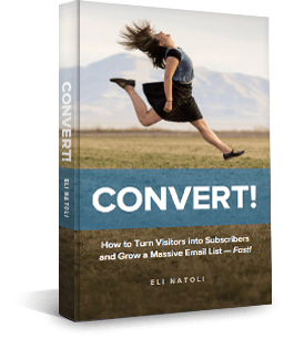 Convert visitors into subscribers