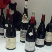Kisu approves of my selection of magnums