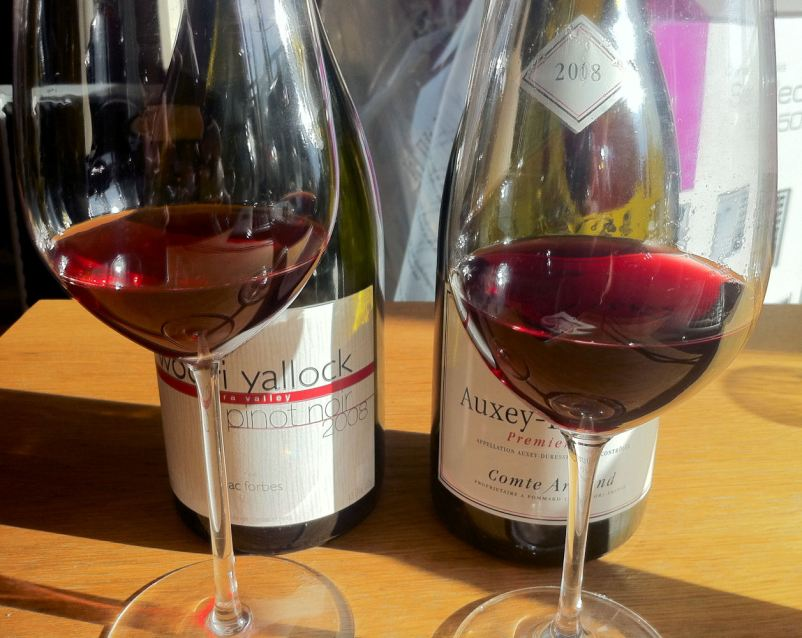 This afternoon's 2008 Pinots