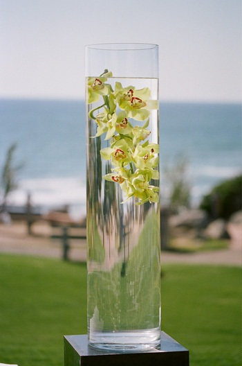 Tall Vases Orchids In Vase Of Water - Elizabeth Anne Designs: The