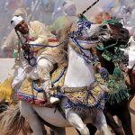 Salon du Cheval d'El-Jadida: Grand Prix de Sa Majesté le Roi Mohamed VI de TBOURIDA