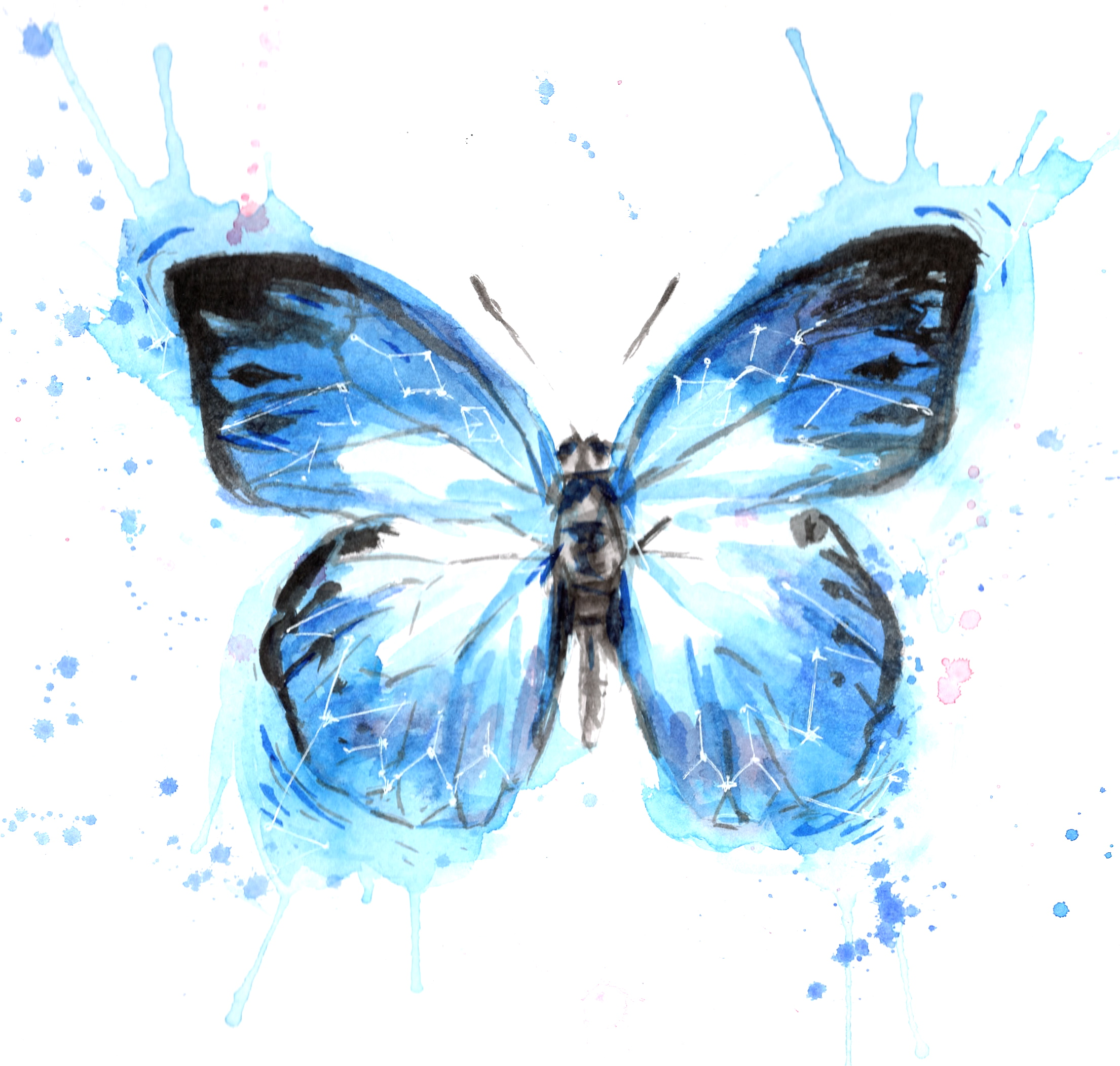 Colorful Animal Print Wallpaper Watercolor Butterfly Blue