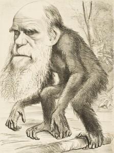 Editorial_cartoon_depicting_Charles_Darwin_as_an_ape_1871-223x300