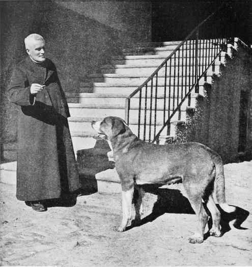 working-st-bernard-at-the-monastery