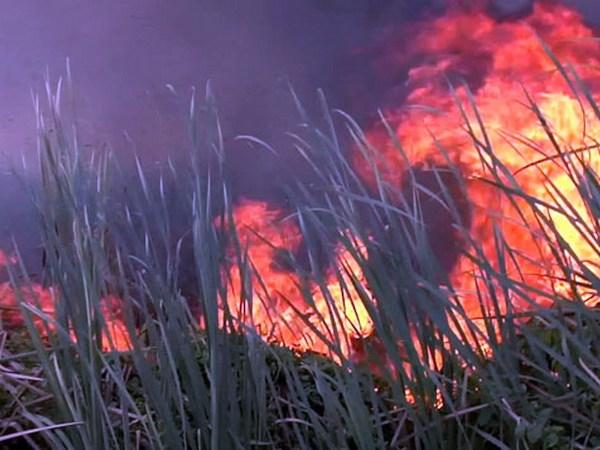 incendio-colina
