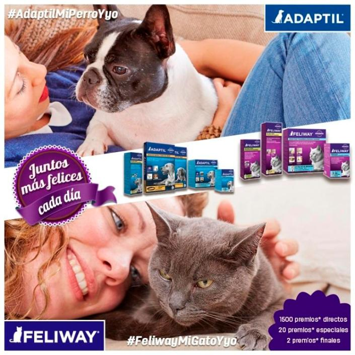 Promoción Feliway - juntosmasfelicescadia