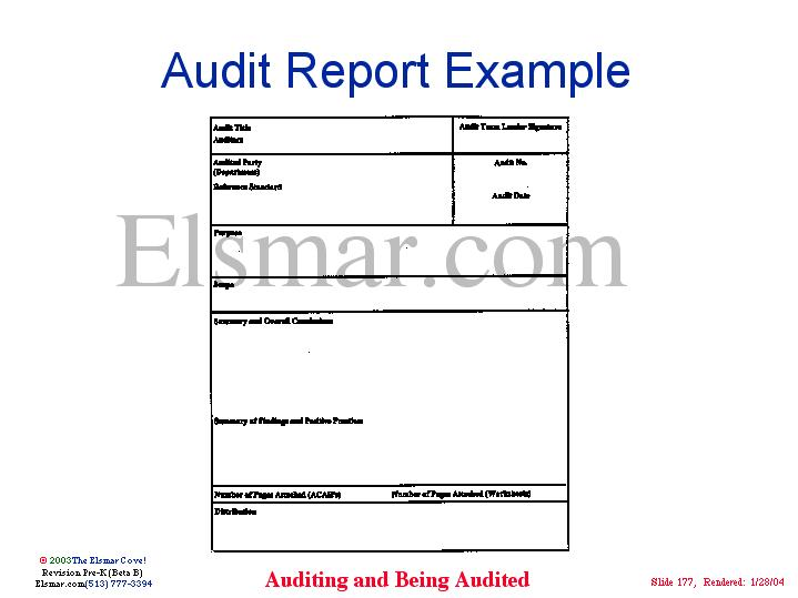 img177jpg - audit report
