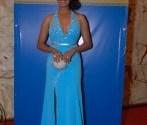 Elegantenoche entrega premios en brillante gala (6)