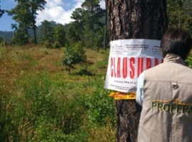 PROFEPA clausuró dos predios aguacateros en Zapotlán por presunto cambio de uso de suelo ilegal