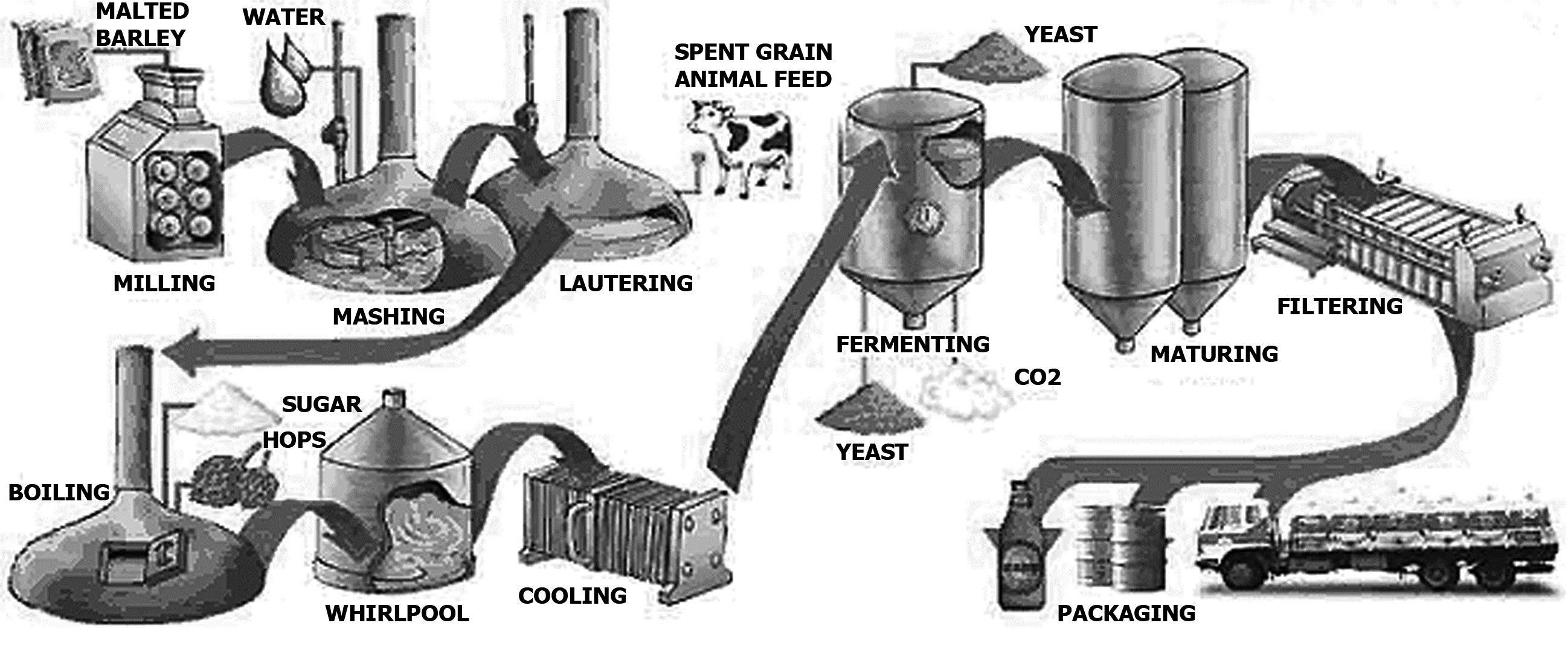 process flow diagram of beer