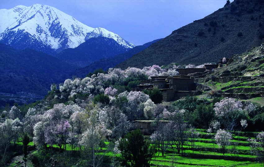 Morocco_Valley-of-Ourika