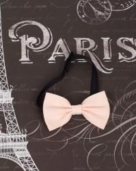 Perfectly Proper Pale Pink Bow Tie ~ Men - Elzoria
