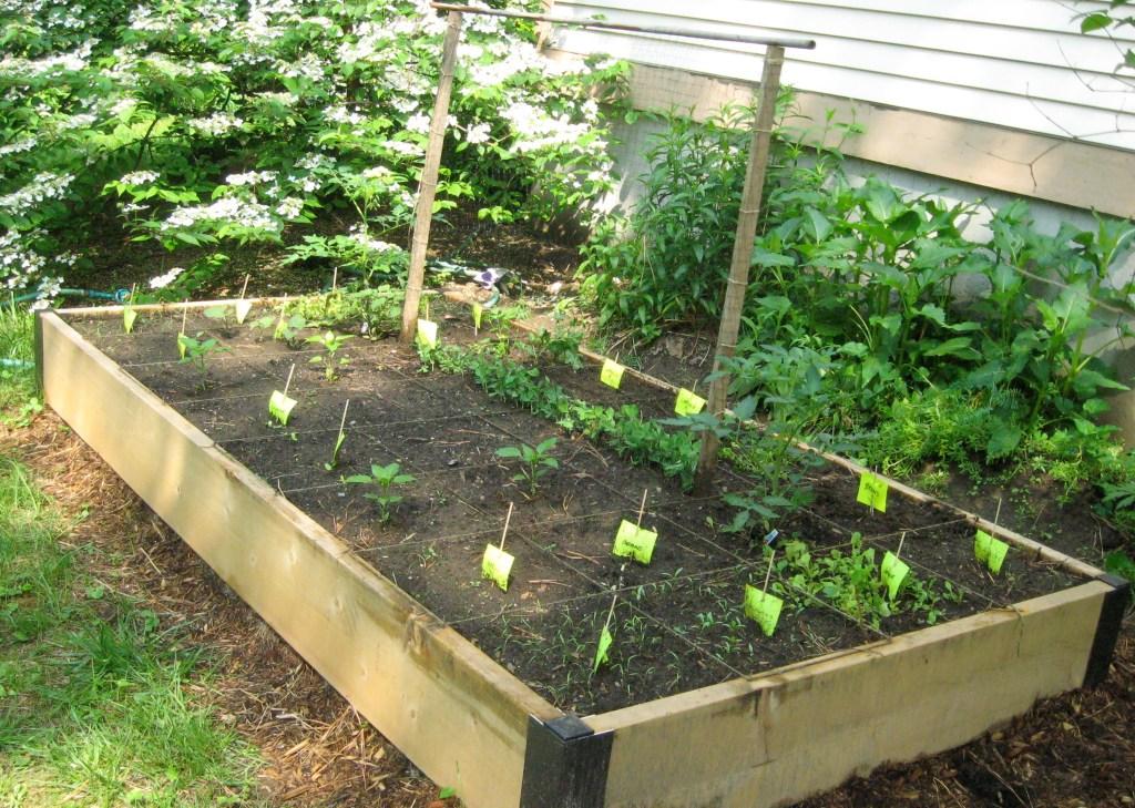 Permalink to Simple Vegetable Garden Plans