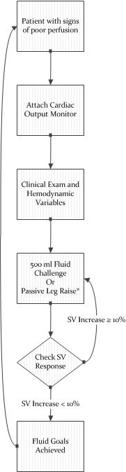 Assessing Fluid Responsiveness