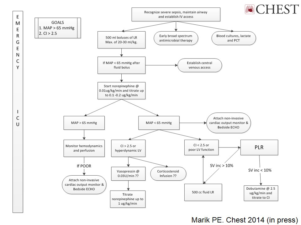Dr. Marik's Updated Hemodynamic Management Flowsheet