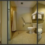 Bathroom in room 1022 — shower, toilet grab bars and tilted mirror