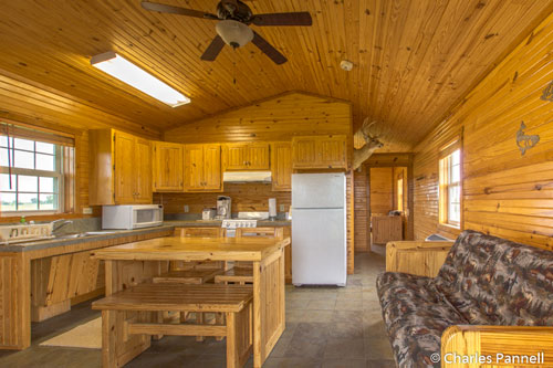 Genial Kitchen In The Malvern Cabin